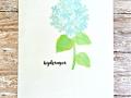 watercolorhydrangea