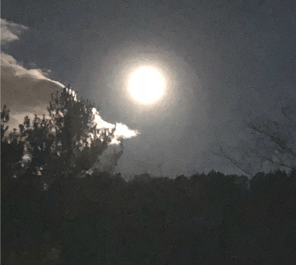 Pic of the full moon
