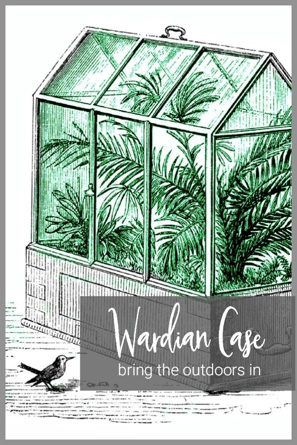 Wardian Case indoor garden illustration