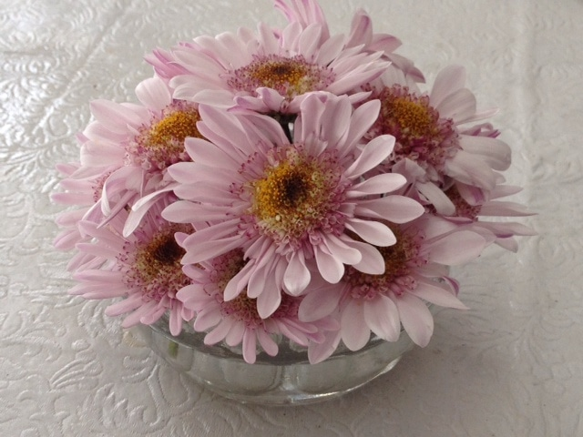 All in one glass flower~ flower frogs ~ gardenmatter.com