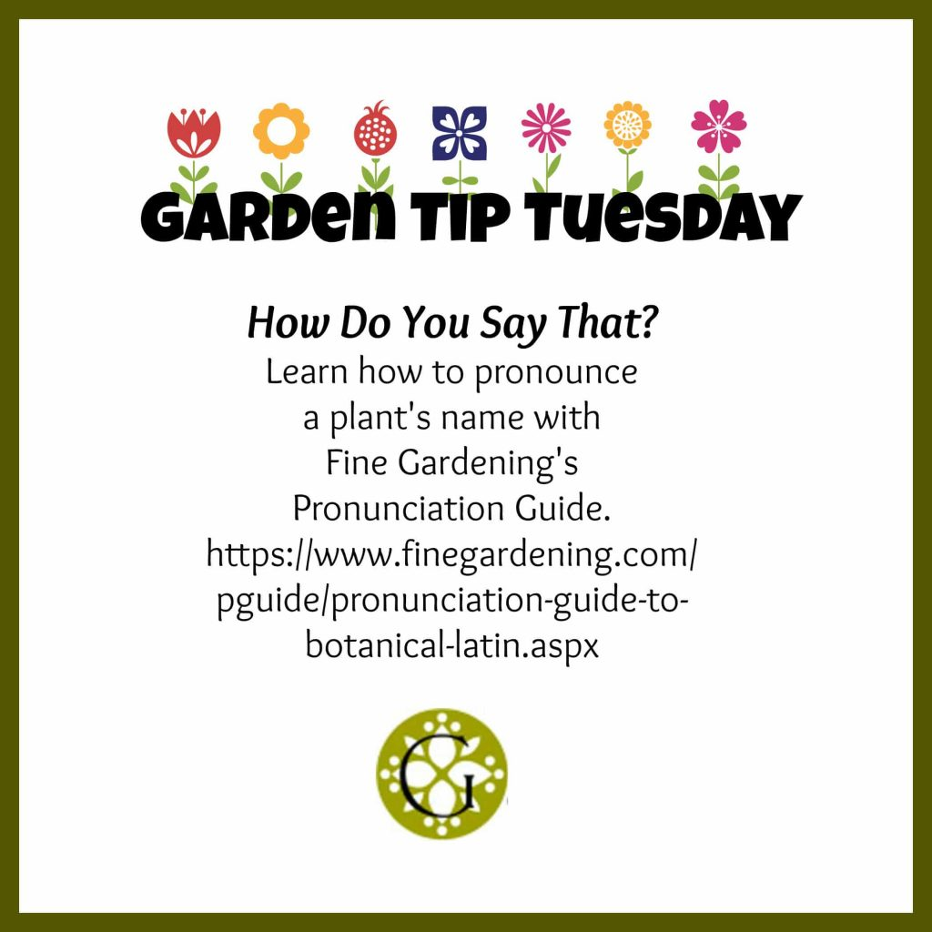 Garden Tip Pronunciation