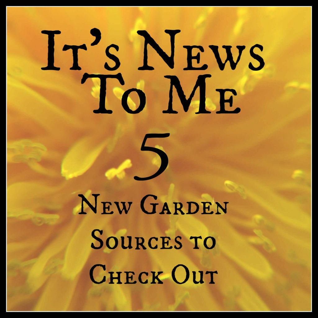 It's News to Me – New Trends and Gardening Obsessions