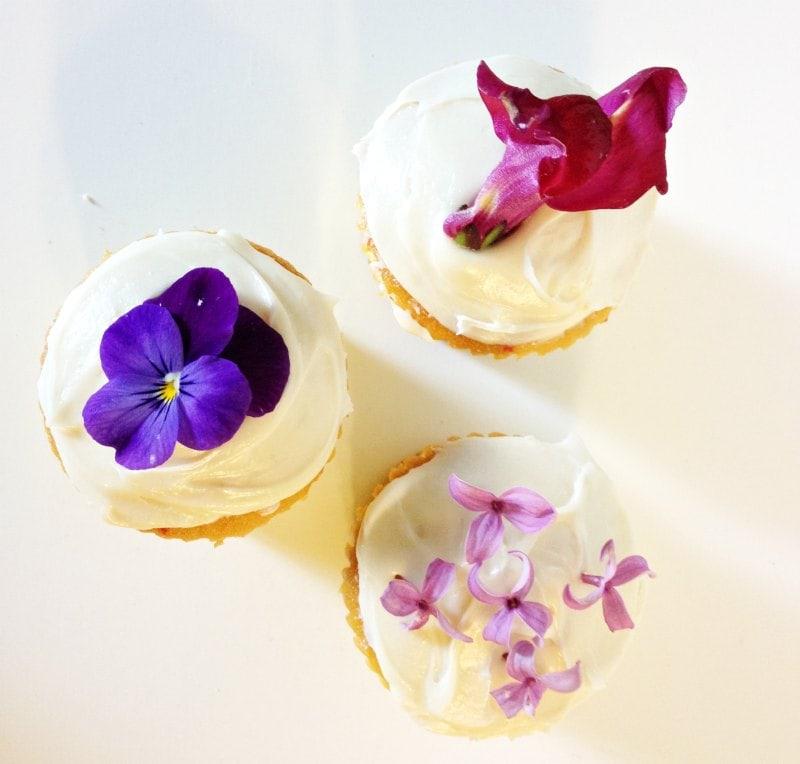 Edible Flowers - Cupcakes - gardenmatter.com
