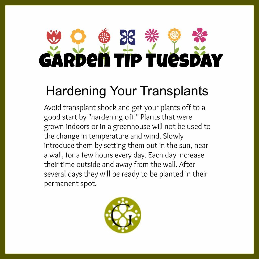 Garden Tip Tuesday