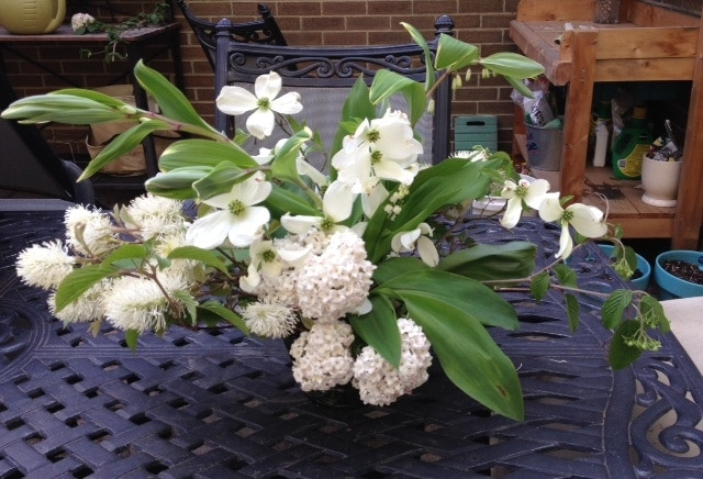 Learn how to make a foraged spring centerpiece from plants blooming around your home. An easy and inexpensive way to bring the beauty of spring indoors.