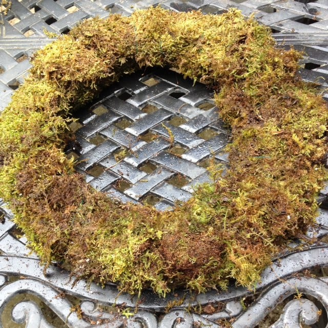 Living Herbal Wreath