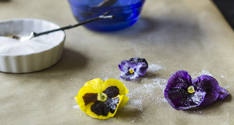 Make candied edible flowers.