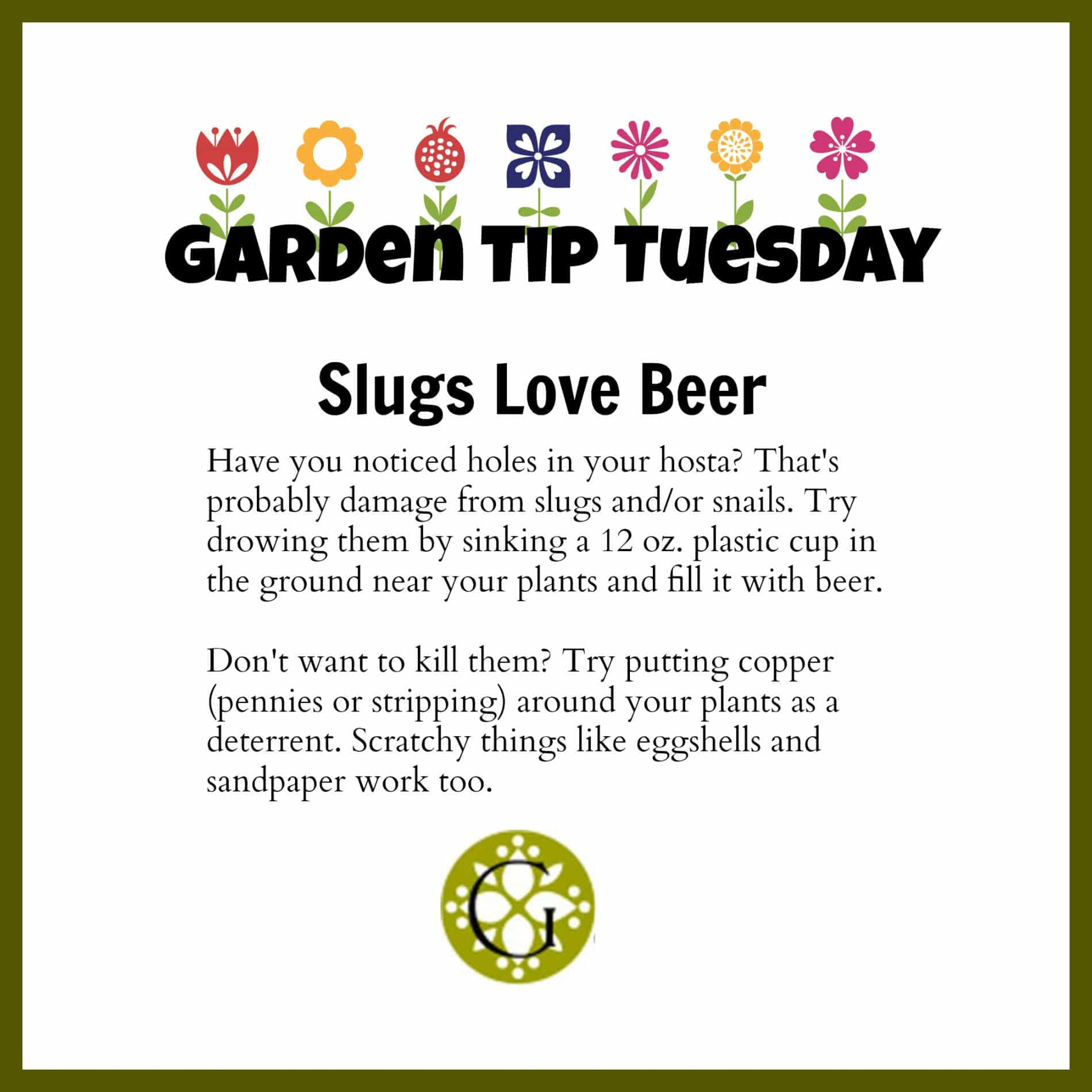 Garden Tip Tuesday Slugs
