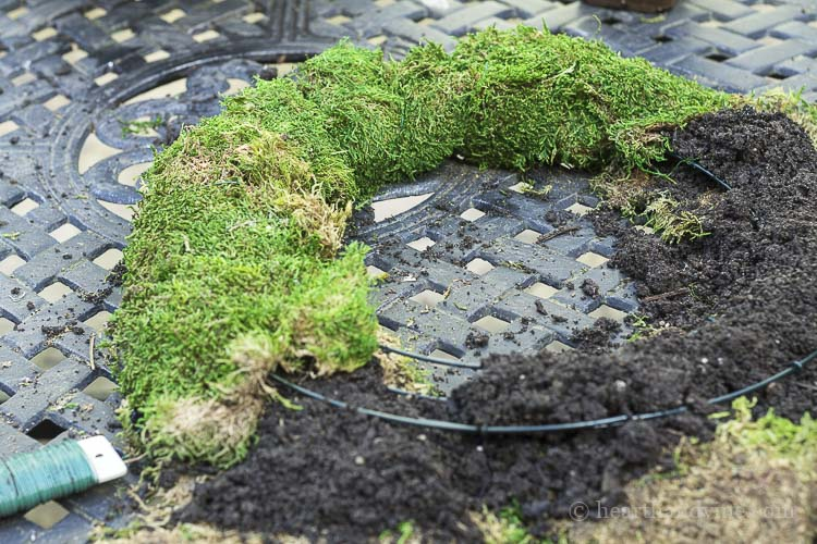 Wrapping soil up with moss on living wreath wire frame.