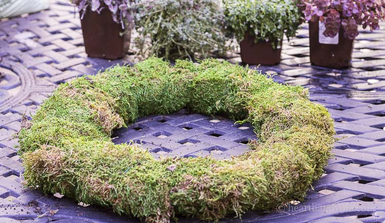 Moss and soil wire wreath frame.