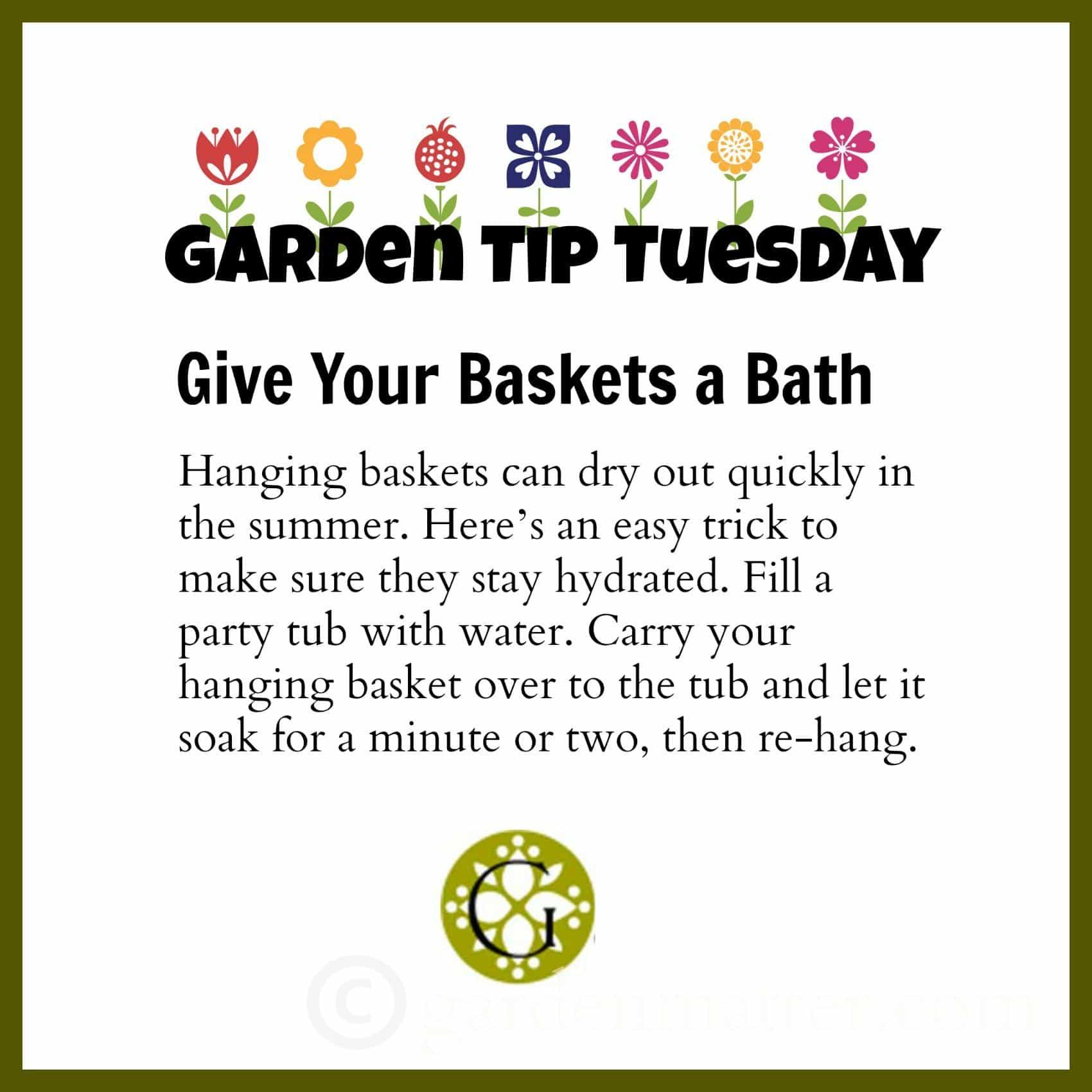 Garden Tip Basket Soak