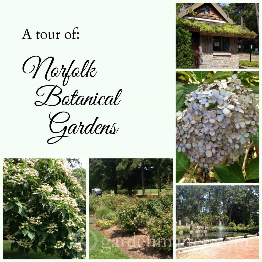 Norfolk Botanical Gardens