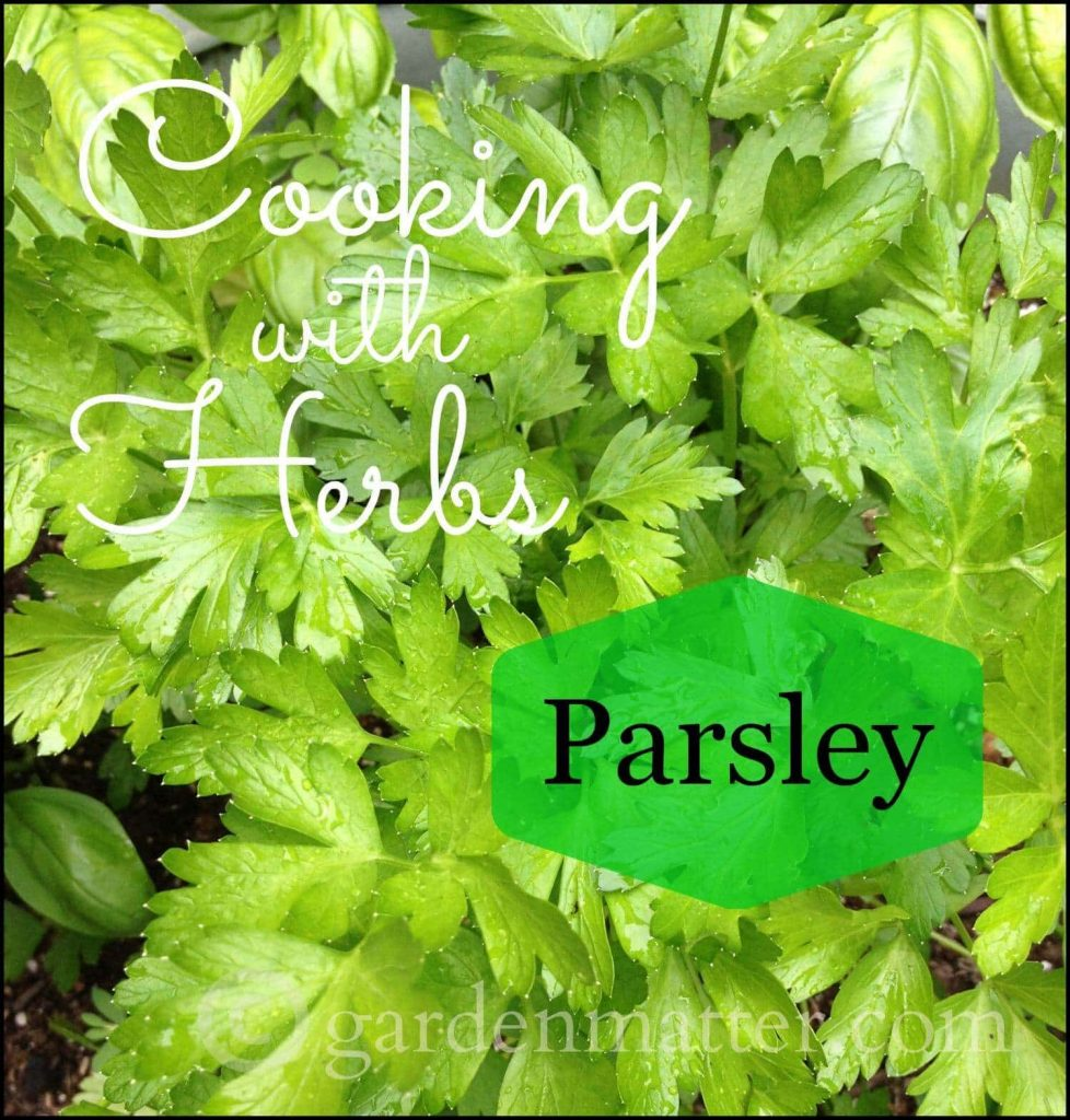 Cooking with Parsley