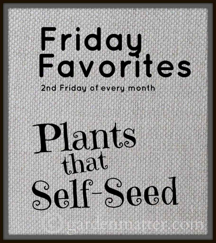Self seeding plants