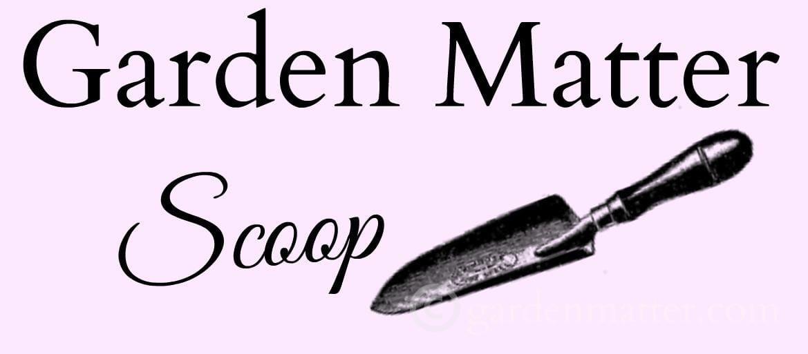 Garden Matter Scoop