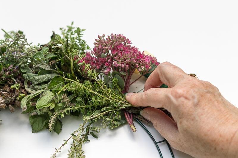 Harvest Wreath - Plant bunch on angle