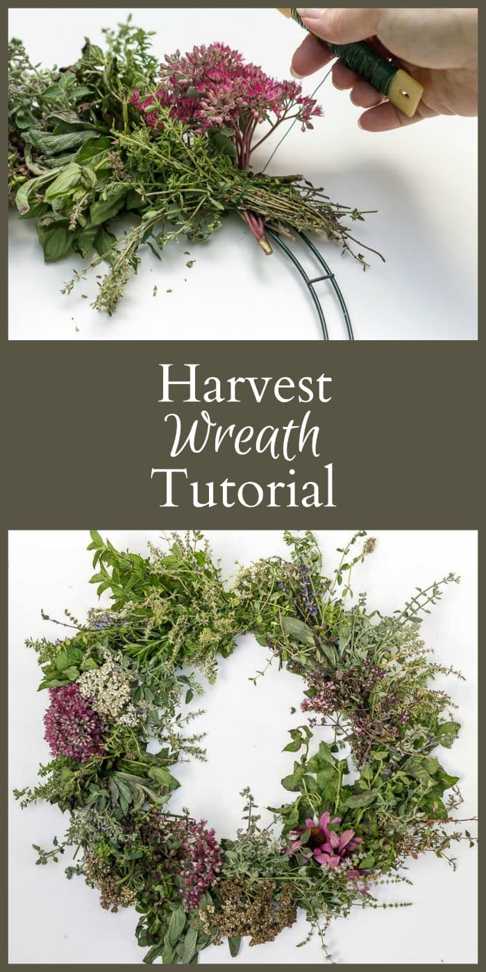 Learn how to create a harvest wreath that you can complete in about an hour. This easy tutorial also gives examples of the many plant materials you can use.