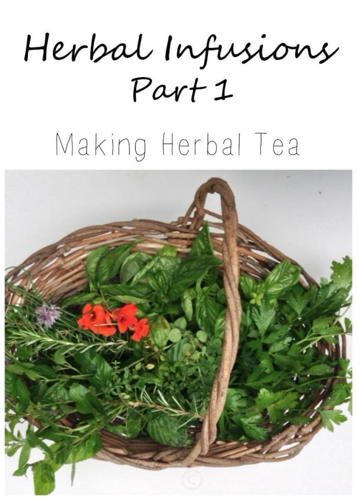 Learn how to make herbal tea from herbs in your backyard by making an herbal infusion.