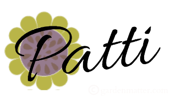SigsmallPatti