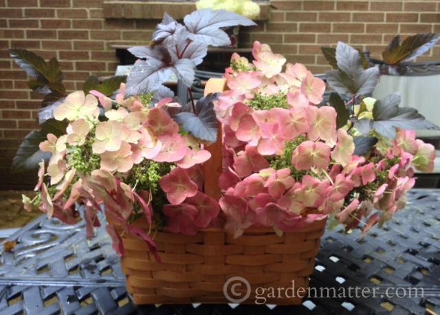 Basket Arrangement ~ gardenmatter.com