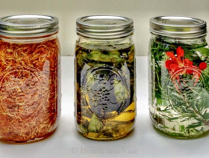 Calendula, basil oil and herbal vinegar