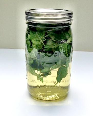 Mint Leaf Infusion