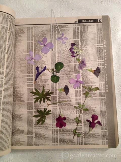 Pflowersphonebook
