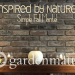 Nature Inspired Fall Mantel