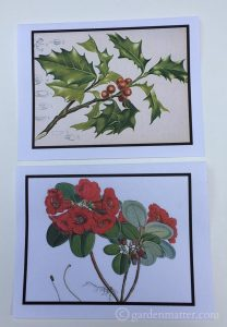 Learn where you can download free botanical prints and create your own works of art for yourself or for gifts.