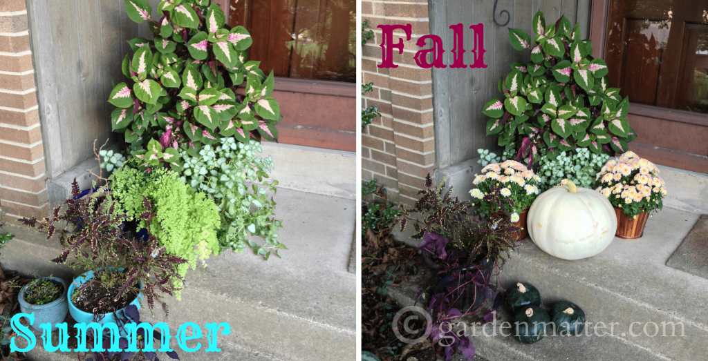 Summer to Fall decor