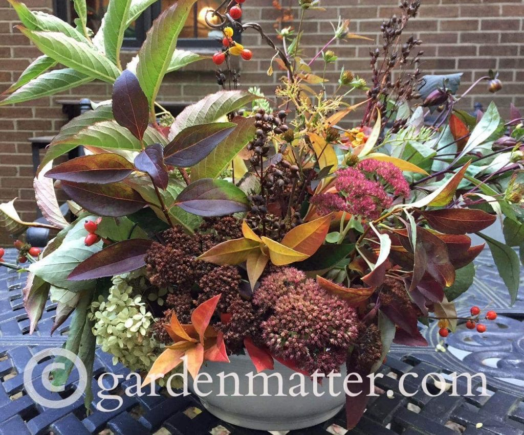 How to Create a Beautiful Fall Foliage Centerpiece from Your Backyard