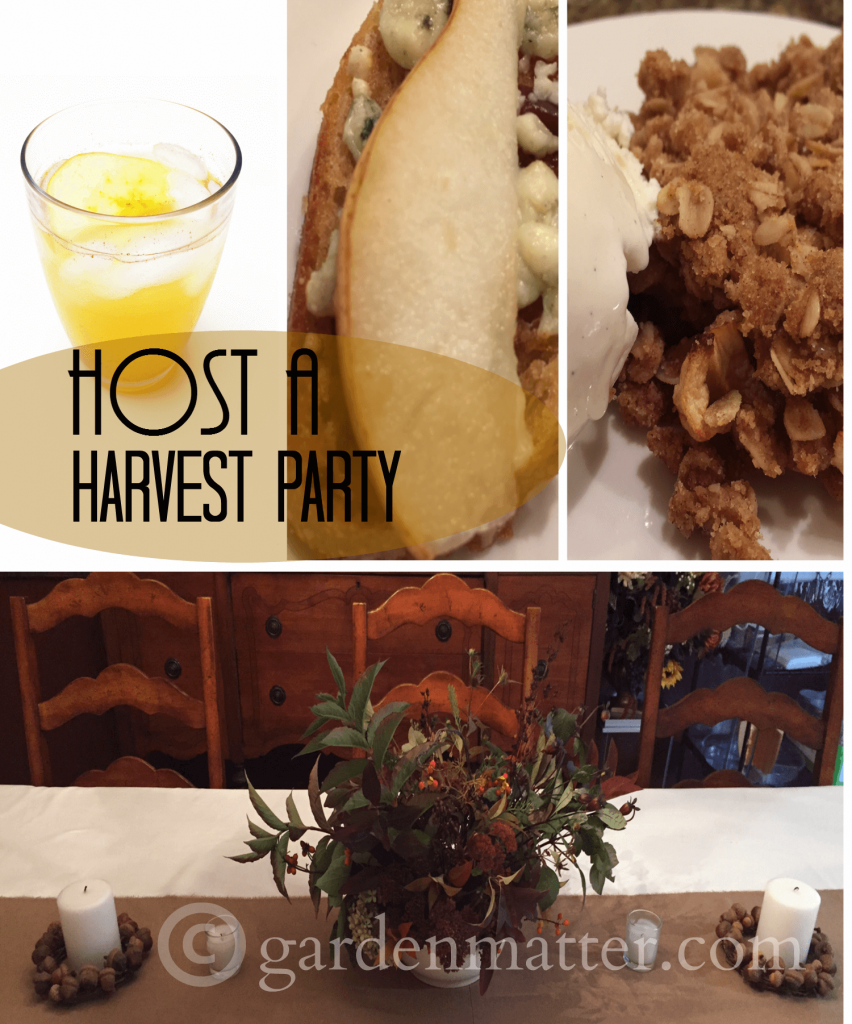 Host a Harvest Party