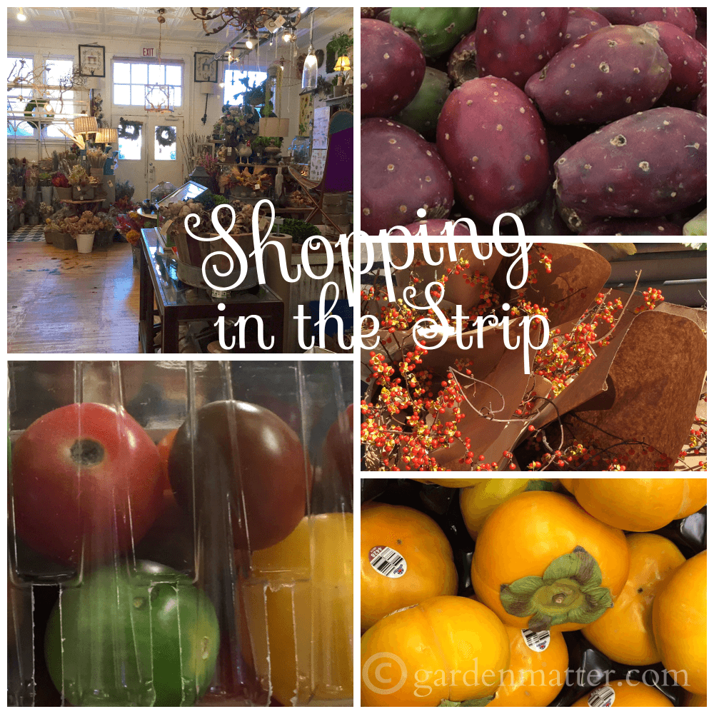 Girls Day Out: Shopping in the Strip District
