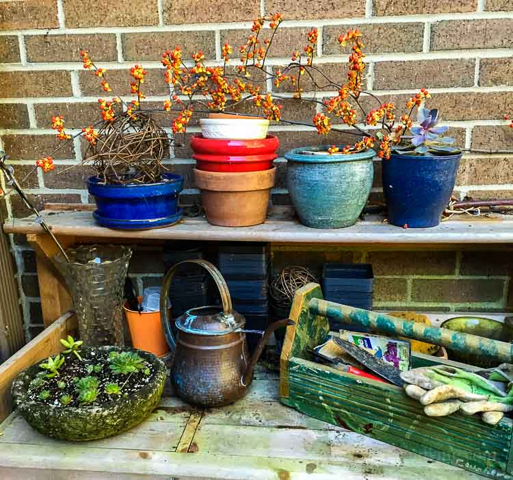 planning next year's garden ideas and tips