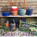 3 Matters to Consider when Preparing for Next Year's Garden