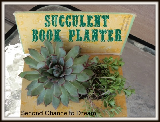 Awesome Succulent Book Planter