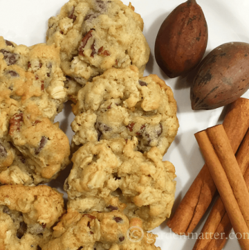 Twisted Chocolate Chip cookies with pecans & cinnamon