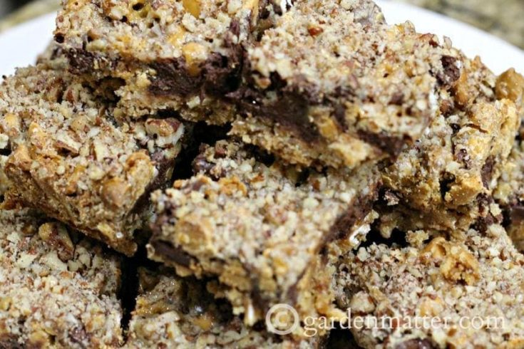 Salted Caramel Chocolate Pecan Pretzel Bars