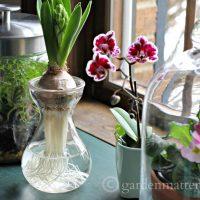 beauty & benefits of glass ~gardenmatter.com