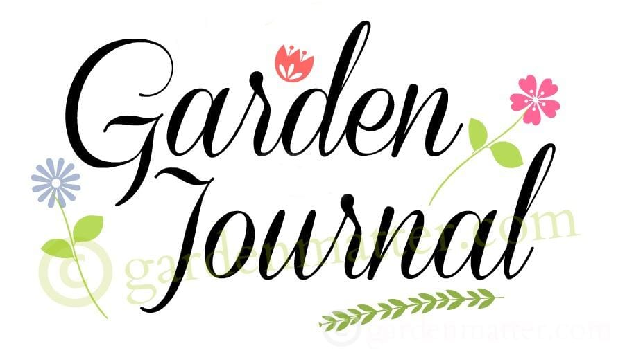 Garden Journal - 10 summer gardening tips