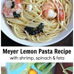 Bowl of Meyer lemon pasta above and image of a ripe lemon on a tree.