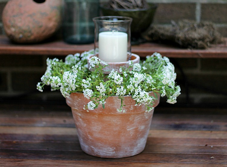 flower pot centerpiece with alyssum flowers