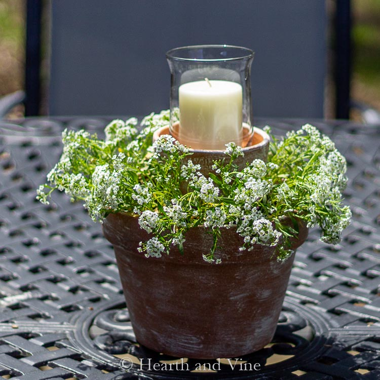 Centerpiece plant with clay pots and a candle