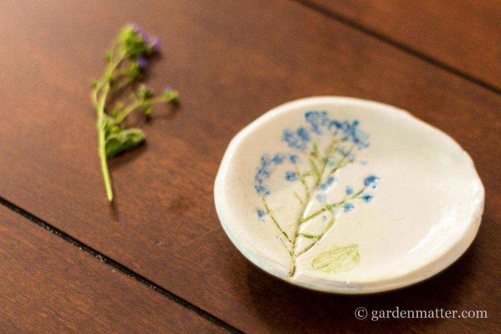 Forget Me Not ~ Pressed Flower Jewelry Dish ~ gardenmatter.com