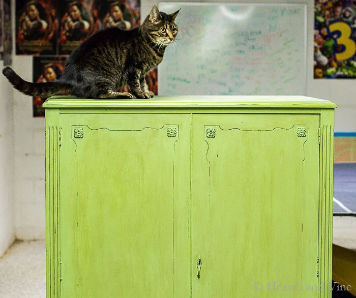 Painted chifferobe with cat on top