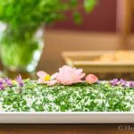 Herbed Cheese Spread with Edible Flower Garnish