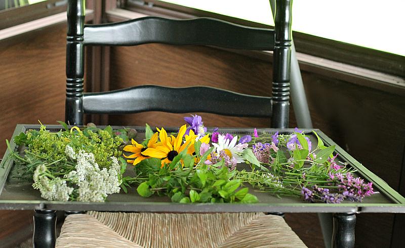 Garden flowers on a window screen lying across a chair.