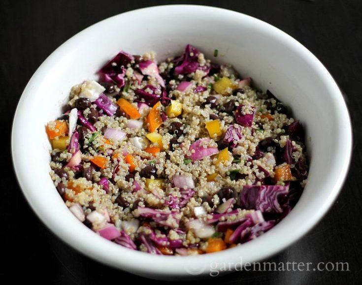 Quinoa Salad with Black Beans and Lime Vinaigrette