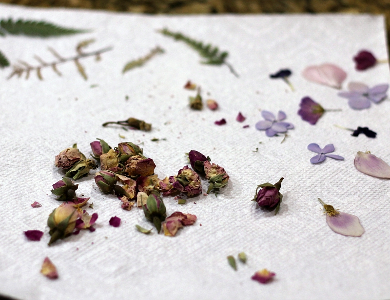 dried flowers on a paper towel
