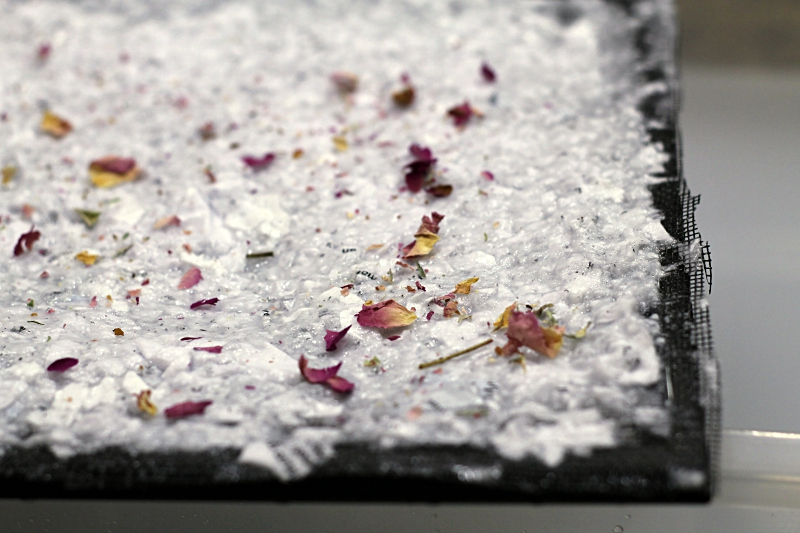 Dried flowers on paper pulp